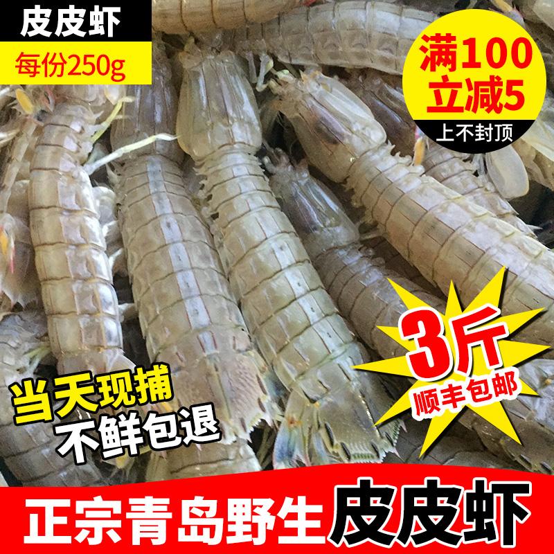 青岛 鲜活海鲜皮皮虾 琵琶虾 虾爬子虾虎虾姑富贵虾海鲜 250g