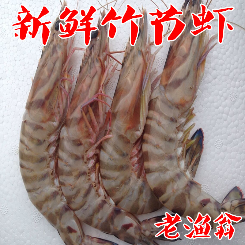 舟山海鲜鲜活 新鲜野生斑节虾 九节虾 竹节虾 红虎虾 新鲜海虾