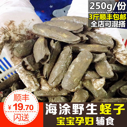 兰姐 鲜活蛏子250g 新鲜圣子野生双头蛏海蚬海贝宁波特产海鲜水产
