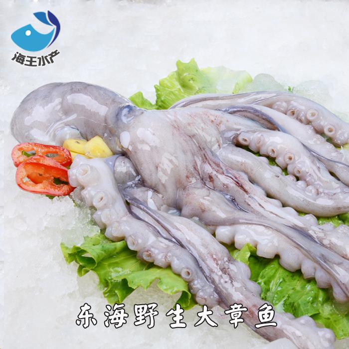 【海王】东海鲜活海鲜 野生大章鱼 八爪鱼 章鱼小丸子 每只约1斤